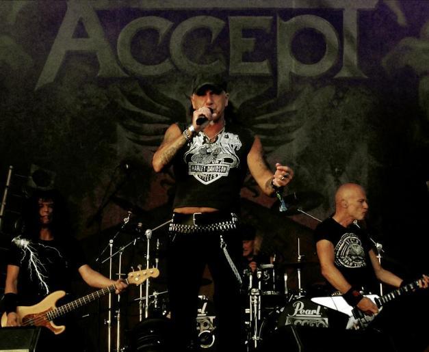 ACCEPT Bloodstock 2013