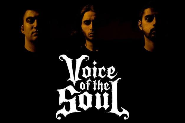 VoiceOfTheSoul2014