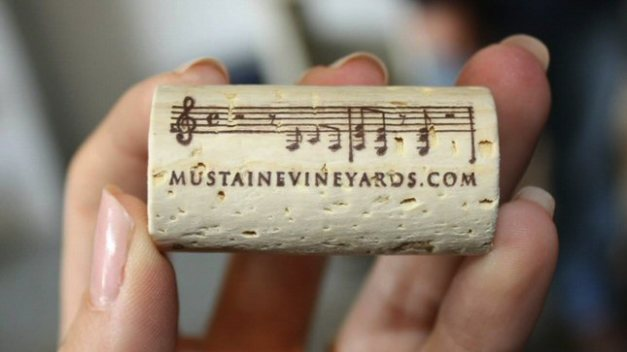 megadeth-dave-mustaines-wine