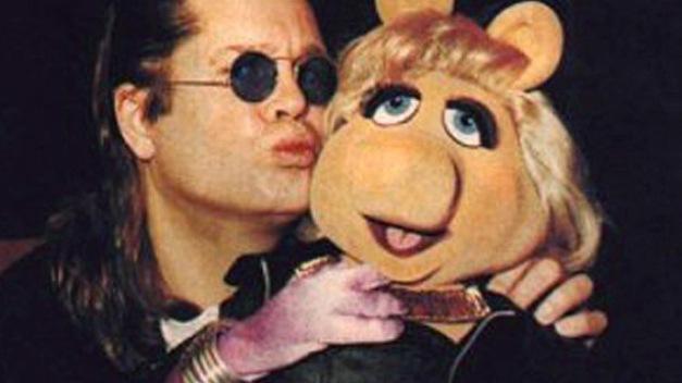 Ozzy-Piggy
