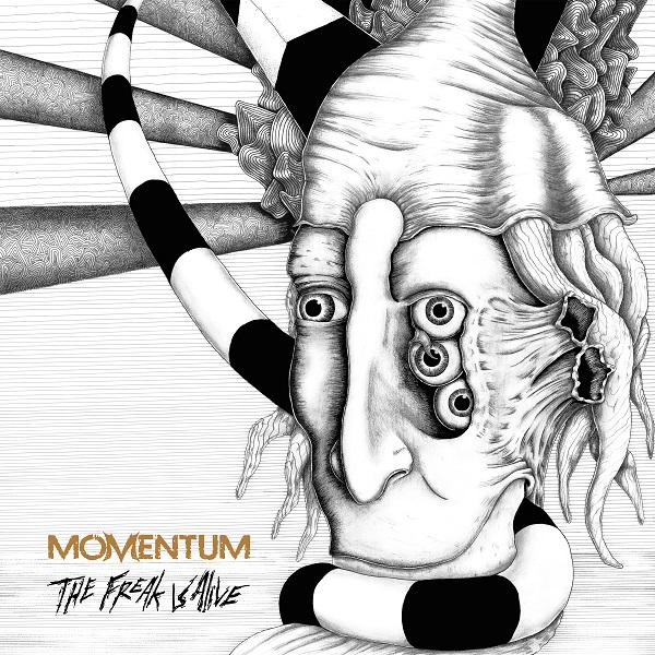 Momentum-cover