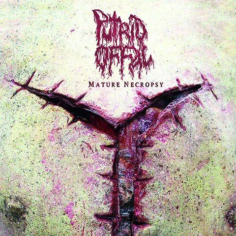 PutridOffal-vinyl-reissue