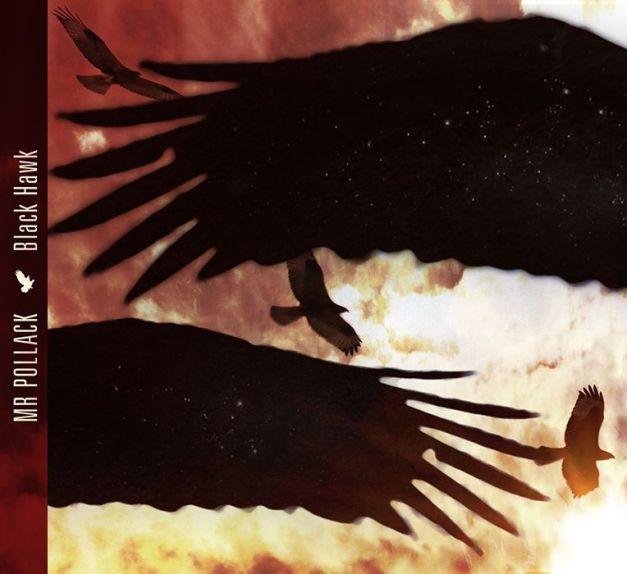 Mr. Pollack - Black Hawk