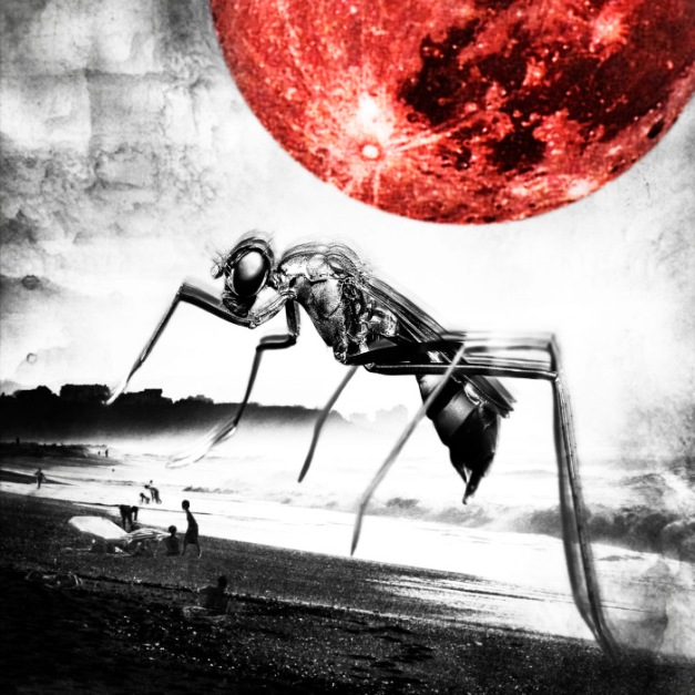 Polanski-Albumcover