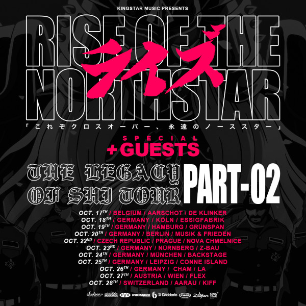 RISE-OF-THE-NORTHSTAR-flyer