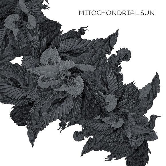 MitochondrialSun-cover