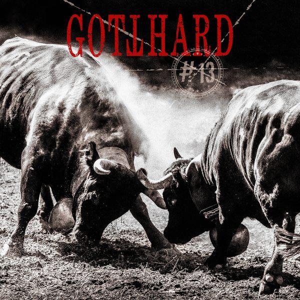 gotthard-13