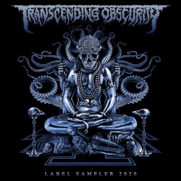 TranscendingObscurity2020LabelSampler