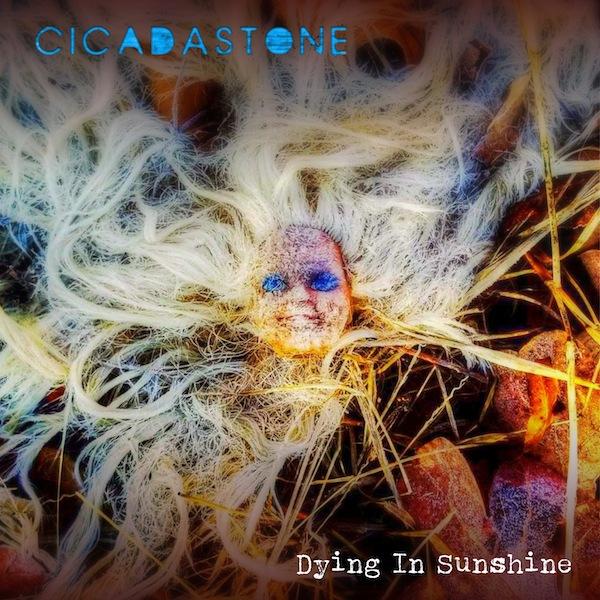 CICADASTONE-cover